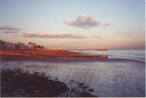 Worthing shoreline and pier